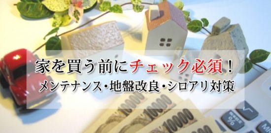 家を買う前にチェック必須の知識!メンテナンスやシロアリ対策・地盤調査