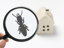 桧家住宅のシロアリ被害対策